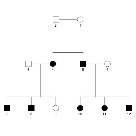A (naive) application of linear mixed models to genetics – Alexej